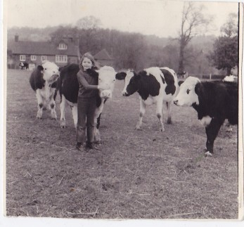 Girl with Cows 1971 Surrey UK www.thinkingcowgirl.wordpress.com