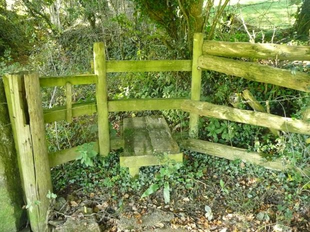 Green Stile www,thinkingcowgirl.wordpress.com