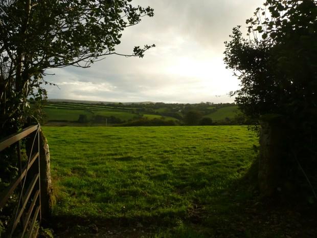 Through the Farm Gate www.thinkingcowgirl.wordpress.com