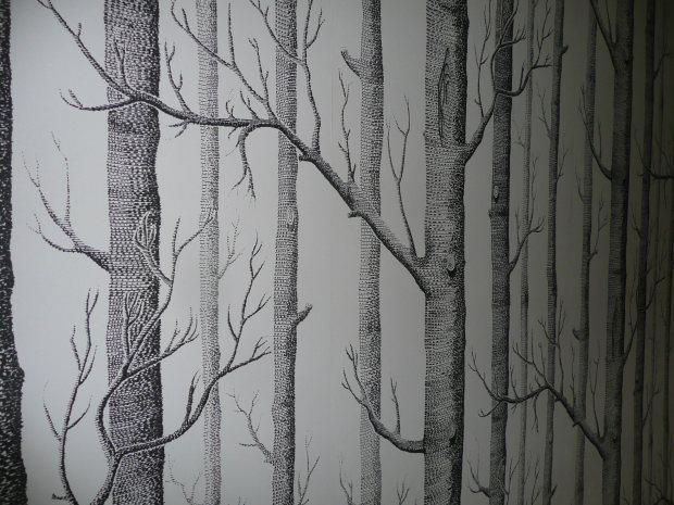 Tree Wallpaper  www.thinkingcowgirl.wordpress.com