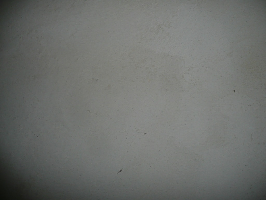 Lime Plaster Wall in Shaded White www.thinkingcowgirl.wordpress.com