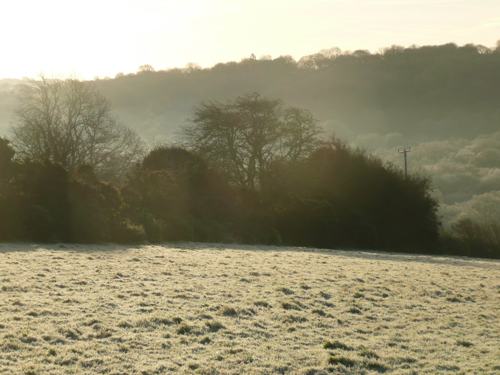 Frosty Scene Cornwall www.thinkingcowgirl.wordpress.com