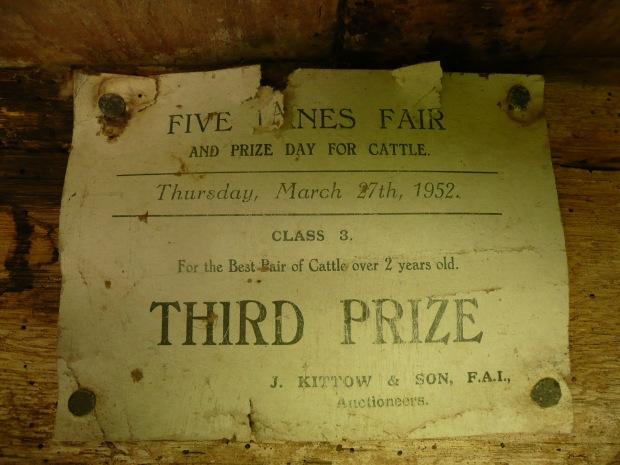 Cattle prize 1952 www.thinkingcowgirl.wordpress.com