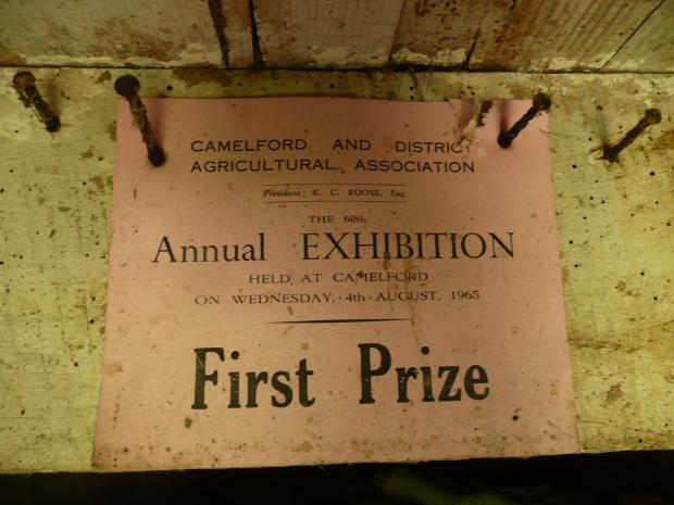 Cattle Prize 1965 www.thinkingcowgirl.wordpress.com