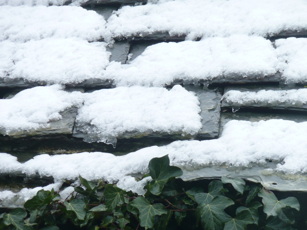 Snow on Slates www.thinkingcowgirl.wordpress.com