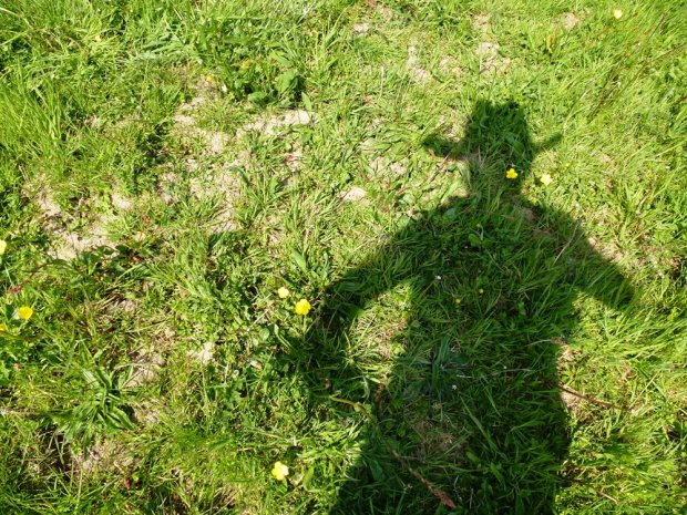 Cowgirl Shadow www.thinkingcowgirl.wordpress.com