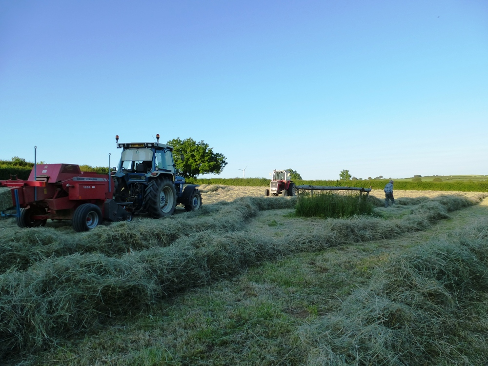 Hay Baling www.thinkingcowgirl.wordpress.com