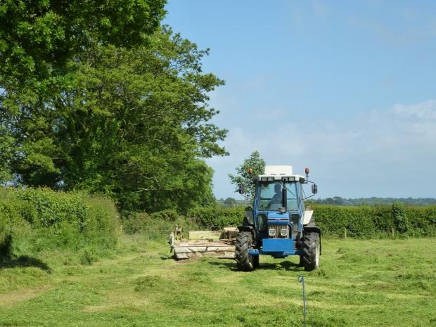 Hay Field being Cut www.thinkingcowgirl.wordpress.com