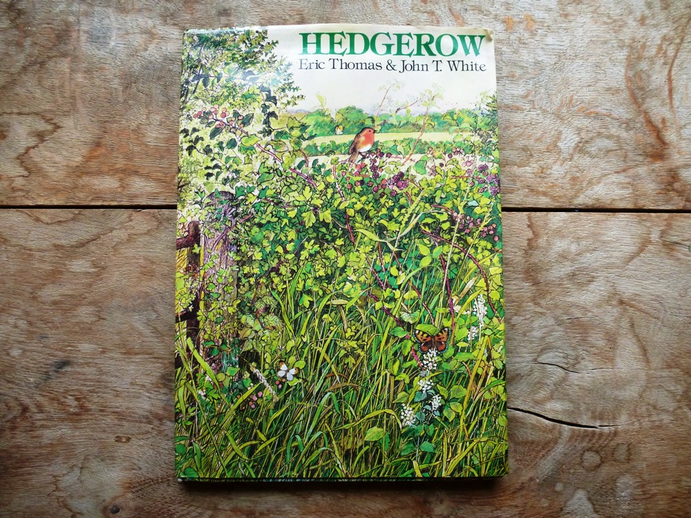 Hedgerow Book www.thinkingcowgirl.wordpress.com