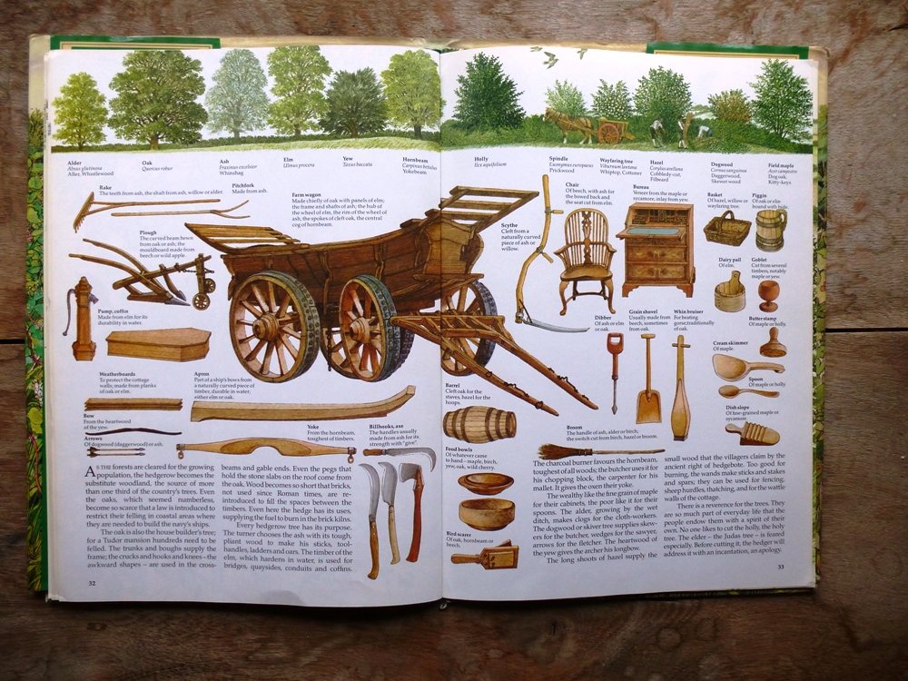 Some of the products which might have been made from the hedge